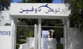 Dauphine Tunis: Formation dans la gestion du risque