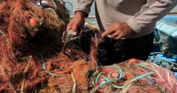 Quatorze pêcheurs tunisiens libérés par les autorités maltaises