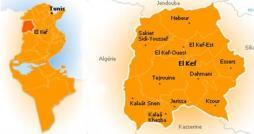 Un terroriste abattu dans la zone du Kef selon le ministère de la Défense