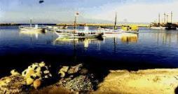 Des soupçonnées d'être infectées par le Coronavirus fuient Djerba par la mer