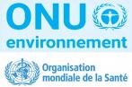 ONU-Environnement